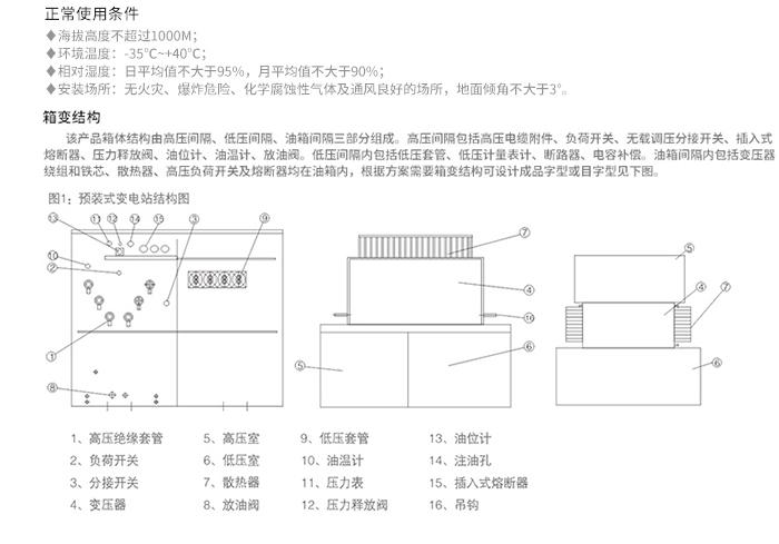 美式箱变结构图