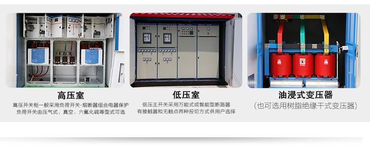 高压室、低压室、油浸式变压器的内部图